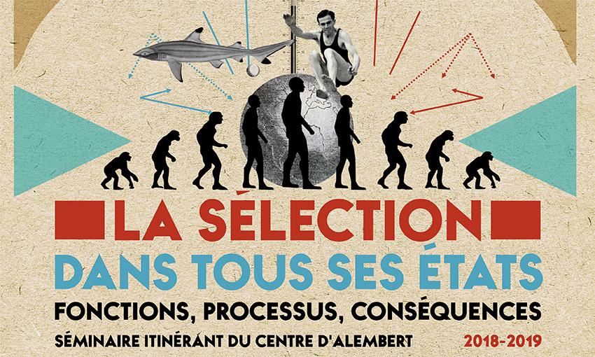 La sélection à l'école en France, comment et pour quoi faire – 13/02/2019