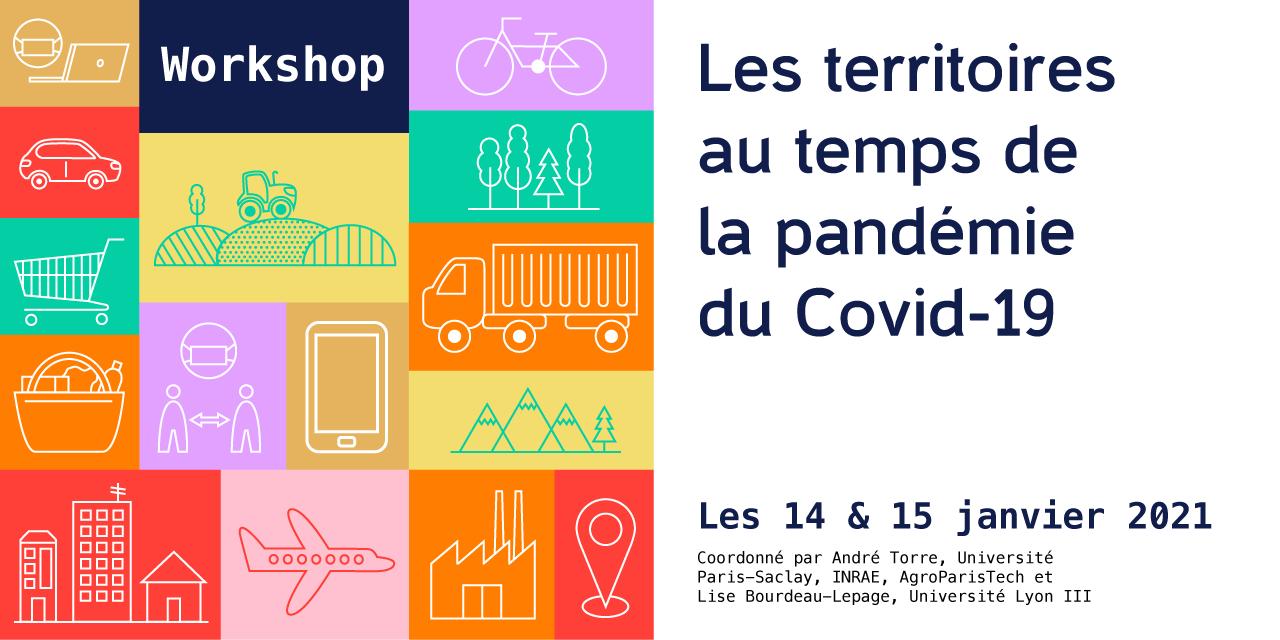 Vidéos – Workshop «Les territoires au temps de la pandémie covid-19 – 14 & 15/01/2021